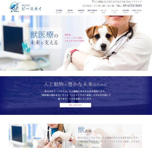 web-create-case-B-sky.jpg