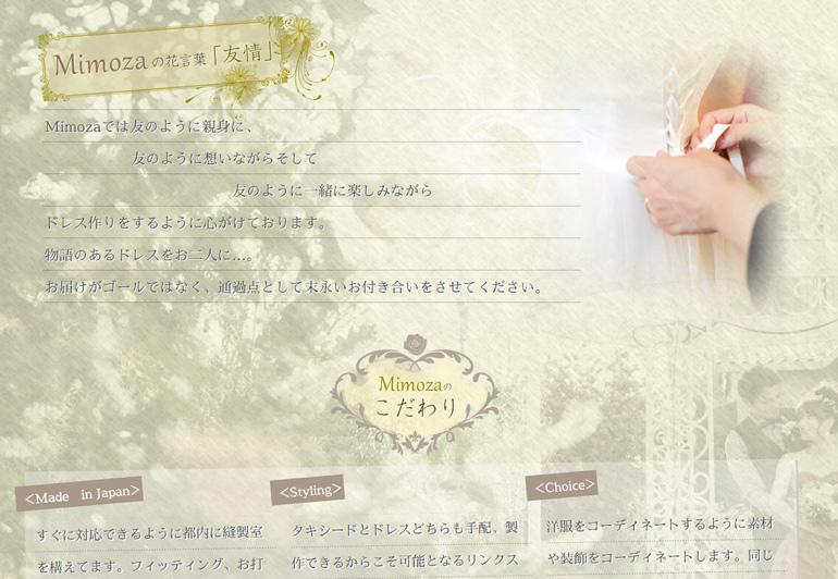 mimoza-web-create-case2.JPG